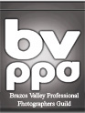 Brazos Valley Professional Photographers Association